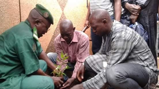 Déjeuner botanique : Yes  INC Mali poursuit son combat dans le cadre de la protection de l'environnement