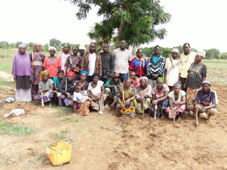 Kati: les riziculteurs de Soninkégny à la découverte du SRI