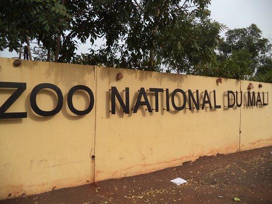 ZOO-MALI : L'irresponsabilité des responsables avérée