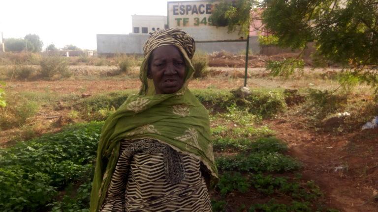 Bamako: Les femmes maraichères face aux dangers des prédateurs fonciers